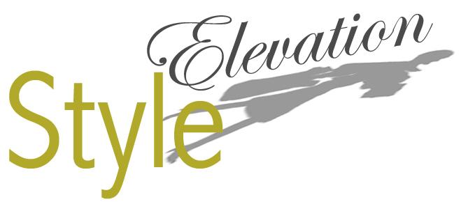 Styleelevation logo final